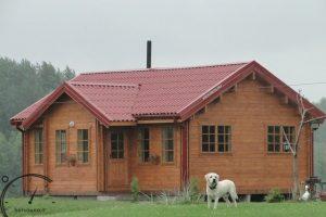 sauna pirtys sauna kernave pirciu gamyba statu pirti parduodu pirti rastine pirtis (1)